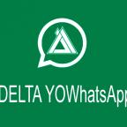 DELTA YOWhatsApp has just been updated to version 3.8.0F