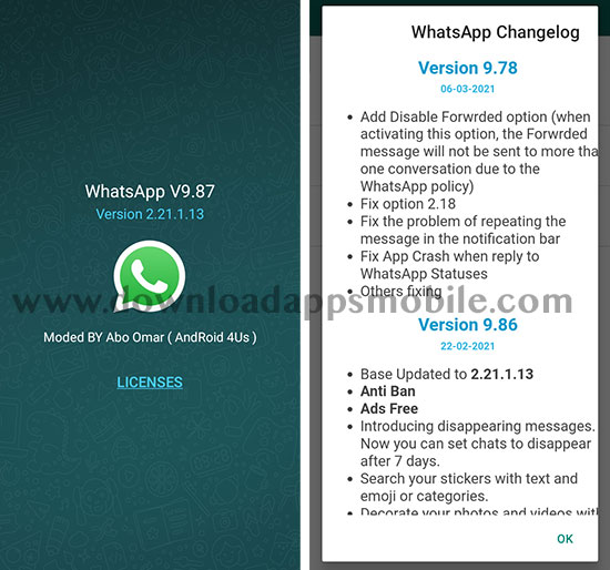 image with all the new features of NOWhatsApp 2021 version 9.87