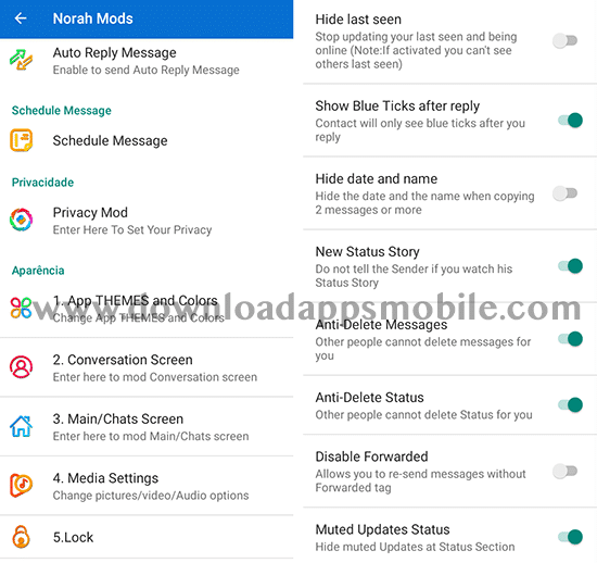 image with the main features of NM WhatsApp